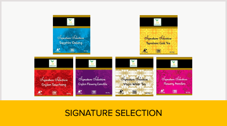 products_tab_Signature_Selection